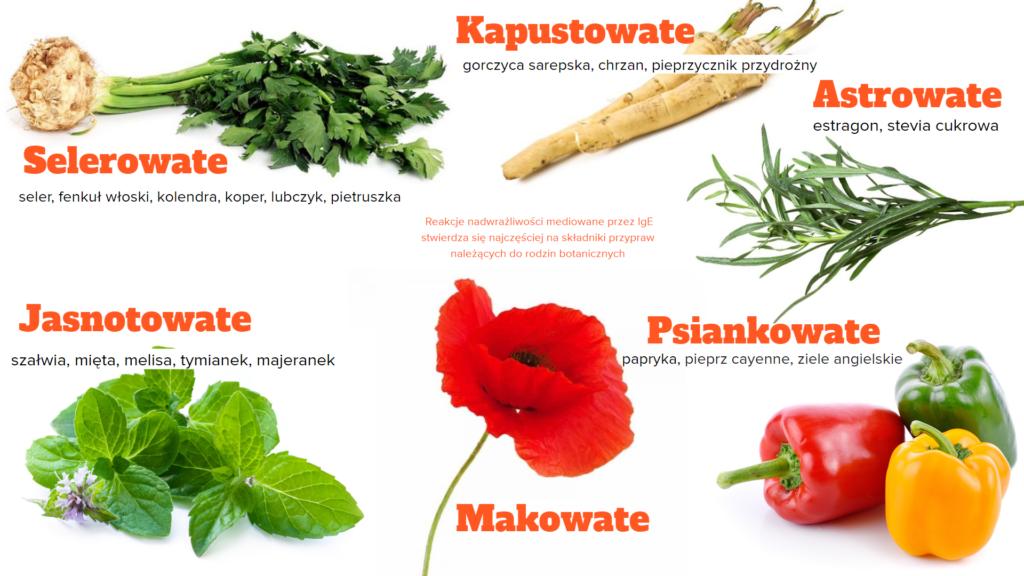 rodziny botaniczne przypraw najczęściej wywołujących alergie